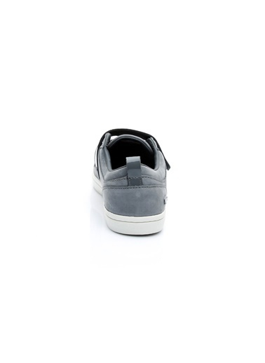 Lacoste Sneakers Gri